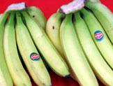 Philippine Bananas
