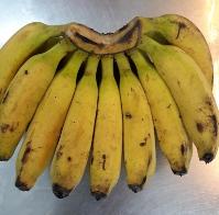 Raja Banana