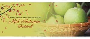 Mid Autumn Festival Pomelo Sale